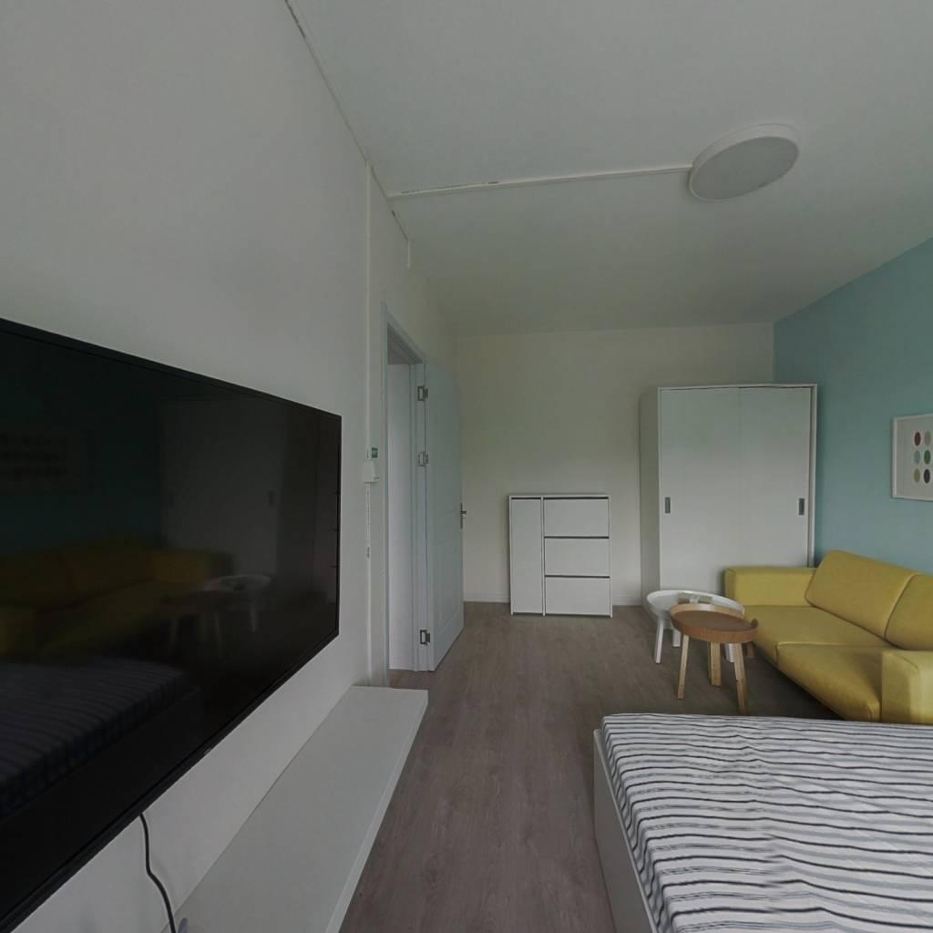 整租·照湖里 1室1厅 南卧室图