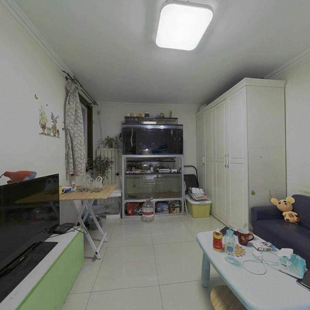 陶然亭+低总价一居+电梯直达+户型方正+2004楼龄