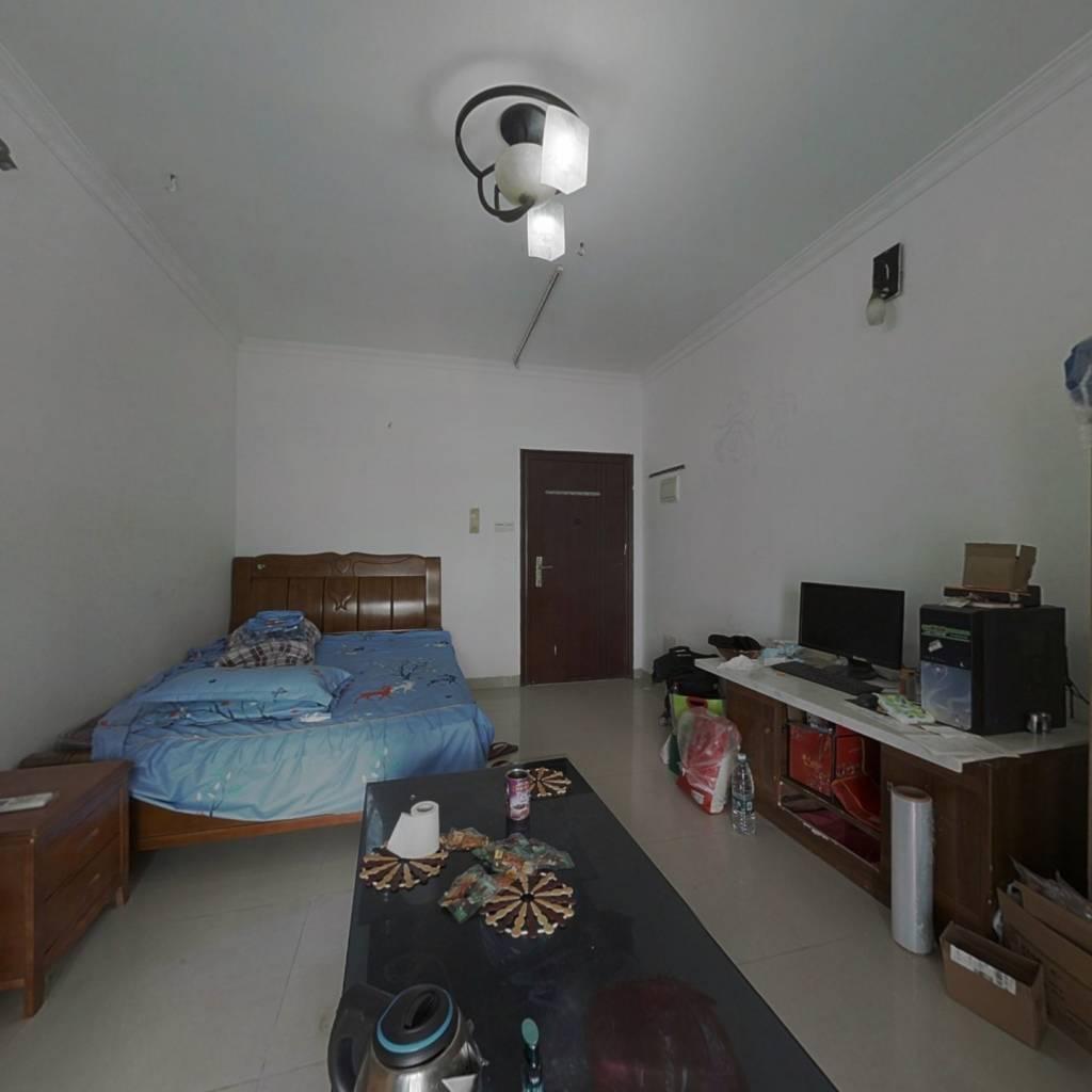 金领公寓 1室1厅 南