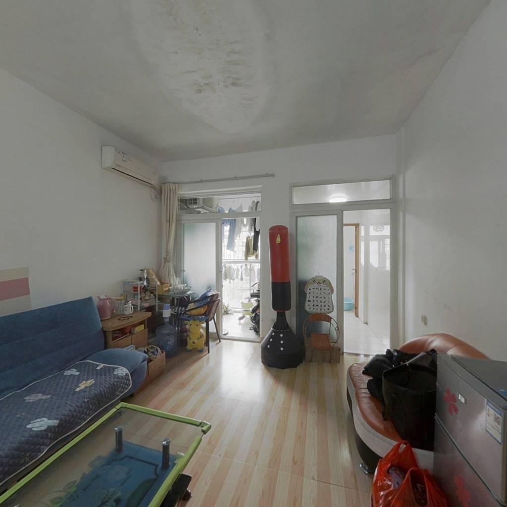 金领公寓,一房一厅一卫一阳,房子保养好