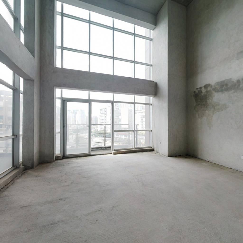 东盟商务区  楼中楼 露台 花园 车位 高厅